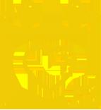 yellow_prevention_houstoncares 156_2