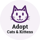 Adopt Cat Button 165