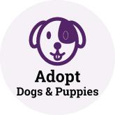 Adopt Dog Button 165