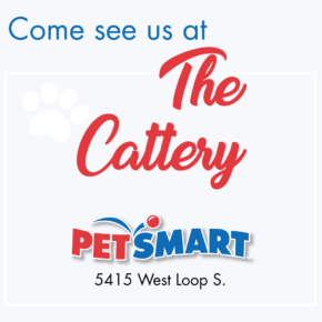 Petsmart Cattery Graphic